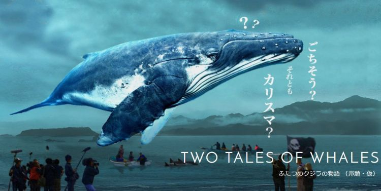 tale of a whale