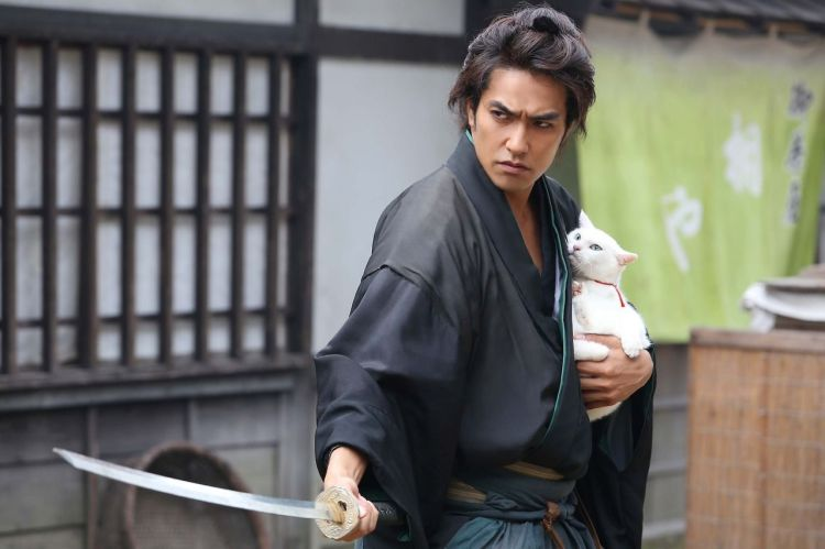 cat samurai still 1