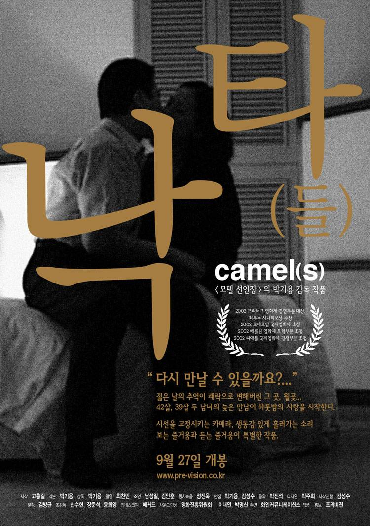 Camel(s) poster