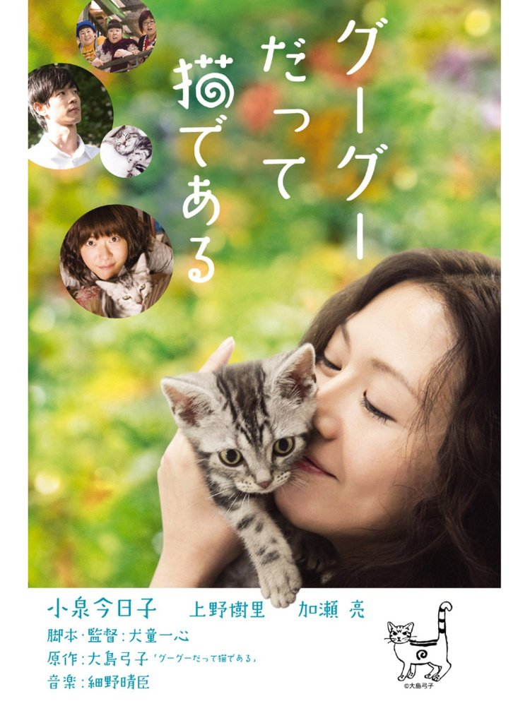 Gu Gu the cat poster